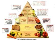 The DASH Pyramid shows which foods you can eat and in what quantities