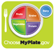 the USDA unveil new food icon called My Plate representing a healthy, well-balanced diet