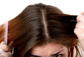 a healthy scalp is necessary for healthy hair growth