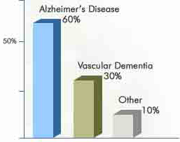 Alzheimer's is one of several different types of dementia, vascular dementia accounts for 30 percent of all cases