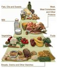 Organic nutrients include carbohydrates, fats, proteins, enzymes, amino acids, minerals and vitamins.
